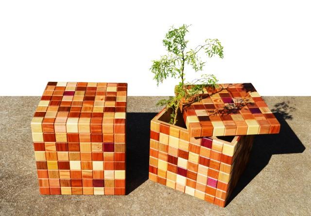 cubos abertos com planta